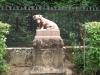 Andrássy kutyája